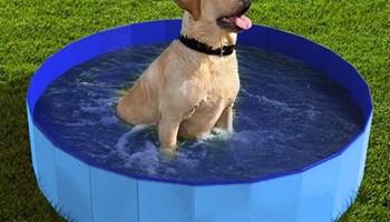 Novi bazen za pse